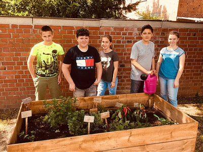 Gartenbau an der Mittelschule