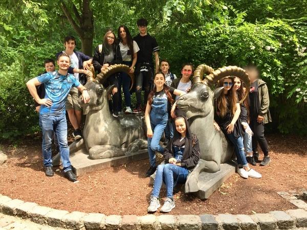Ausflug der Klasse D2 in den Tierpark Hellabrunn