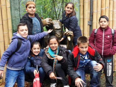 Unterwegs im Zoo – Klasse 5a und Ü3 auf Safari